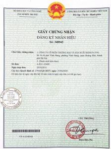 Standa - Ảnh giấy chứng nhận quyền sở hữu trí tuệ